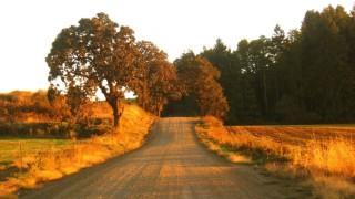 Take a Journey Through Biblical History